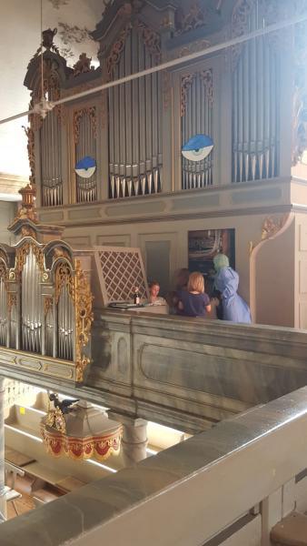 Die kranke Königin, Orgelführung